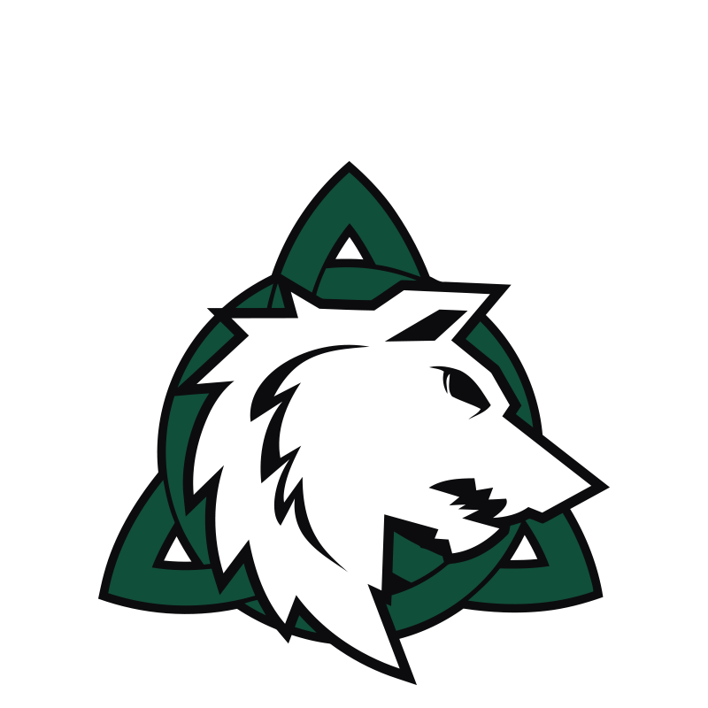 2017-logo-celtics-dolomiti