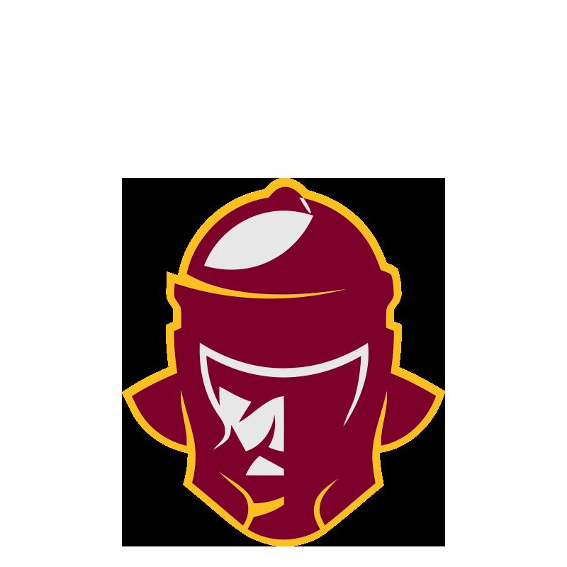 2017-logo-legio-XIII-roma