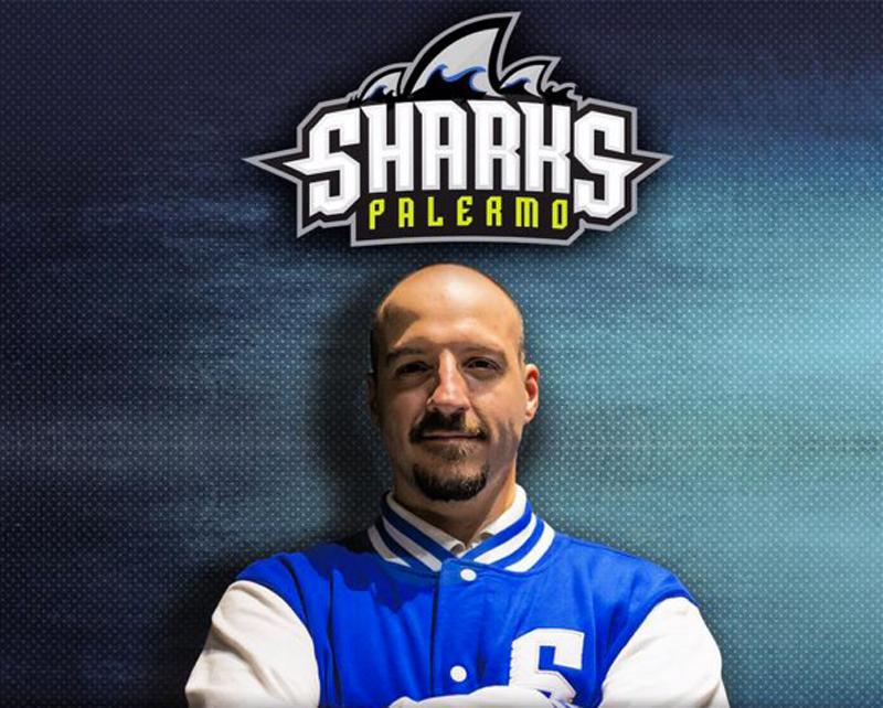 sharks-palermo-alessandro-fonti
