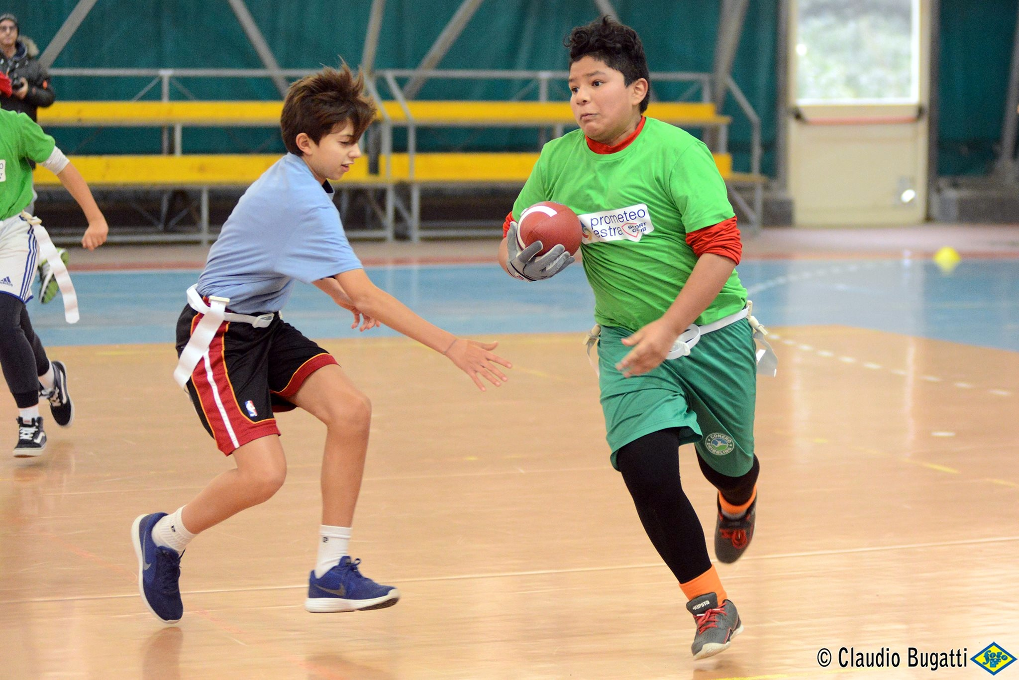Dolphins Torneo Flag 03