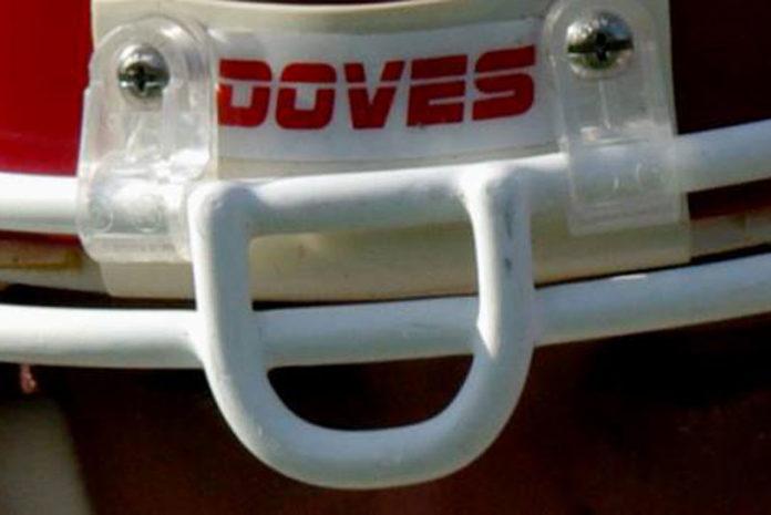 doves-696x465