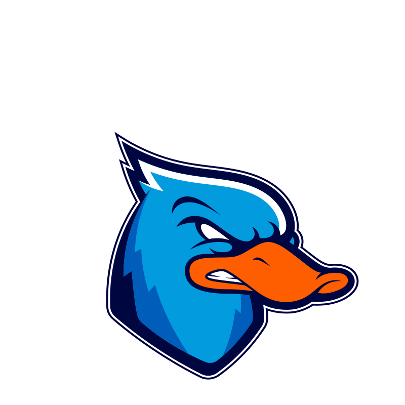 ducks-lazio-football