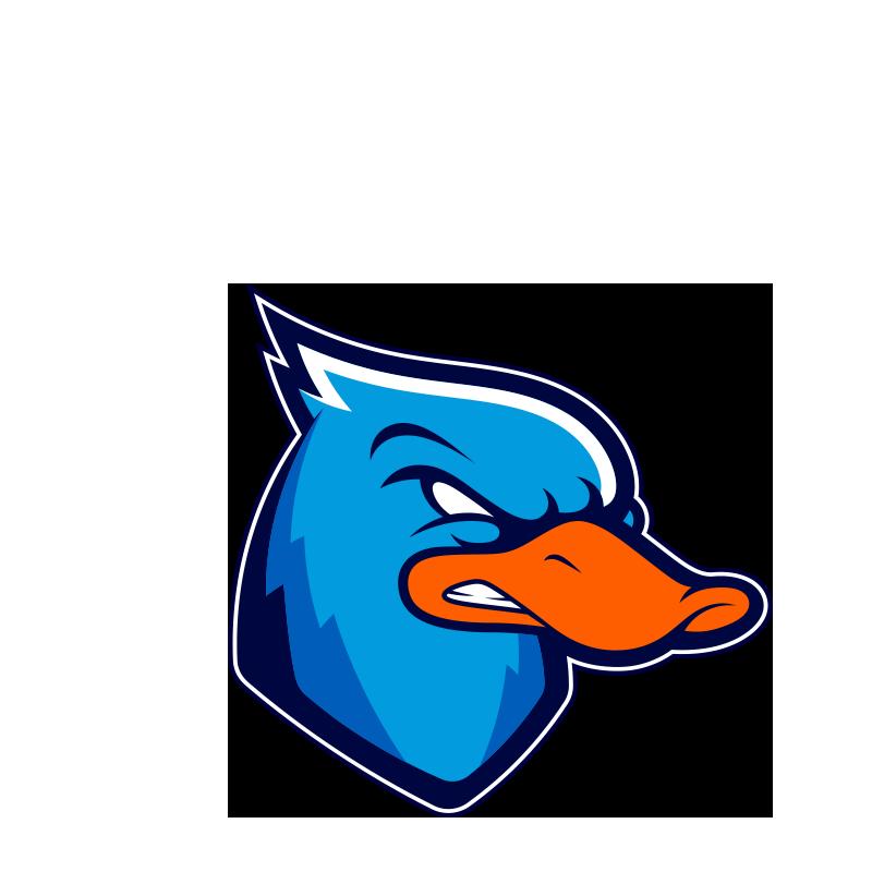 ducks-lazio-football